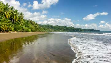 Rainforest and beach, Costa Rica
