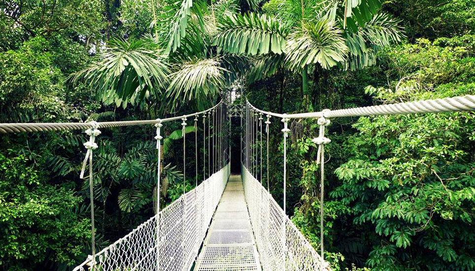 hanging bridges arenal costa rica
