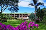 Bougainvillea-garden