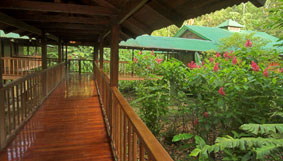 Selva-Verde-Lodge
