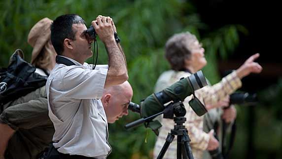 Selva Verde Lodge birdwatching