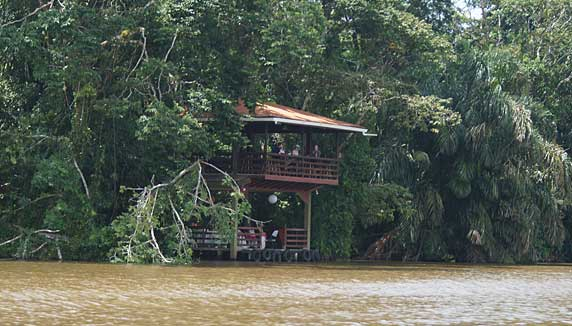 evergreen lodge view of viewing platform from the river