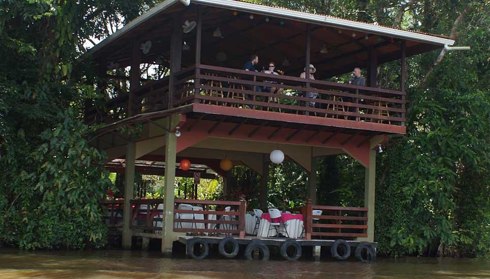 evergreen lodge viewing platform