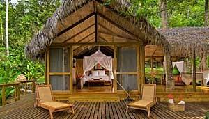 honeymoon-suite