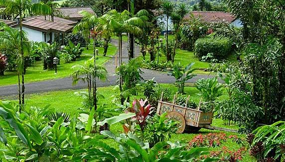 Villa Blanca gardens