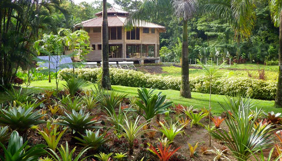 View of Macaw Lodge from gardens