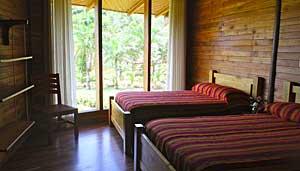 Macaw-lodge-room