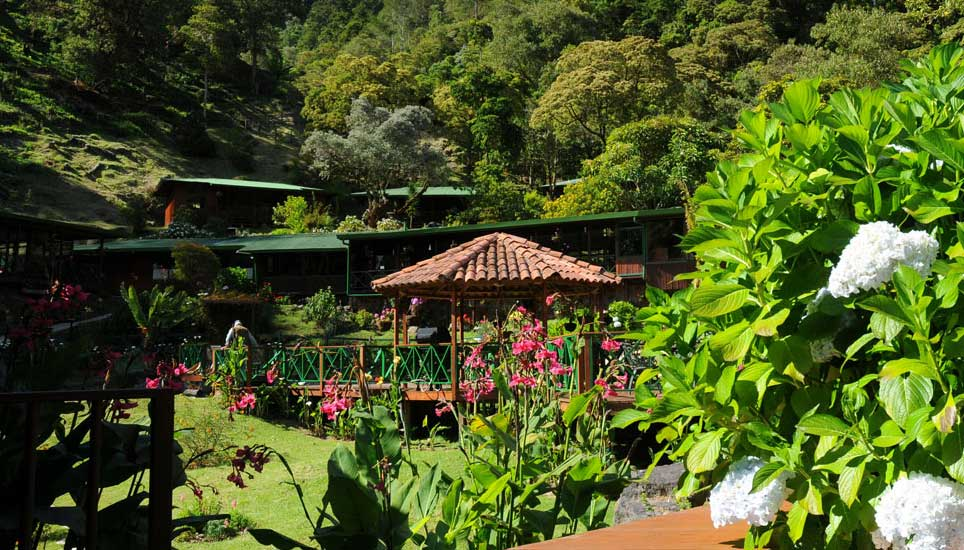 Trogón Lodge gardens