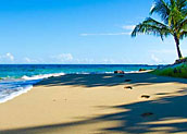 Caribbean-Coast