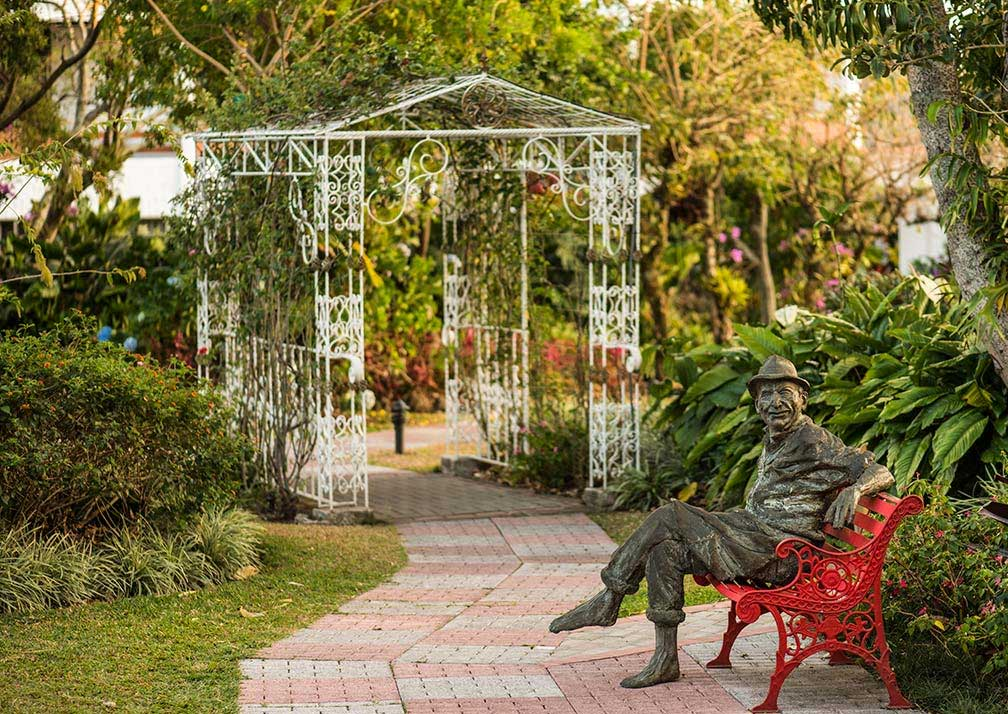 bougainvillea gardens