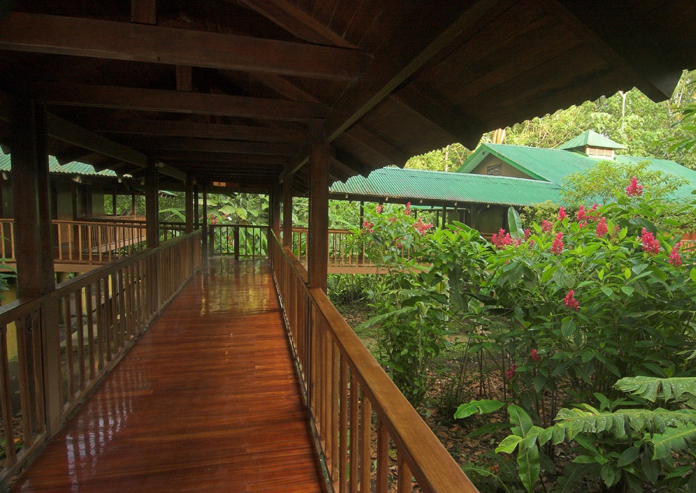 Elevated walkways and tourist lodgingSelva Verde Lodge, Sarapiqui, Costa Rica